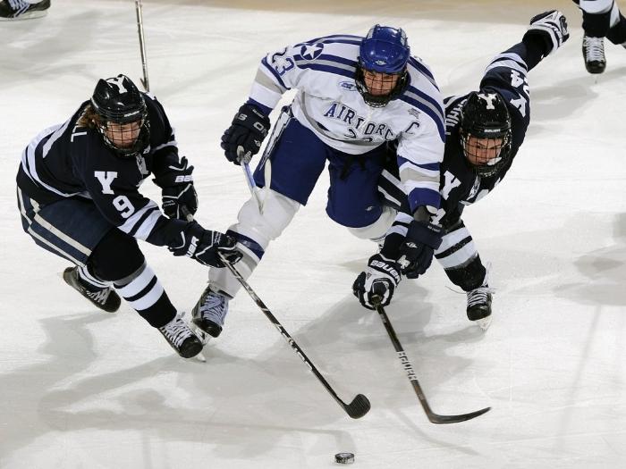 Ставки на спорт могут быть разного направления, к примеру: футбол, хоккей, волейбол, конные скачки и т.д.