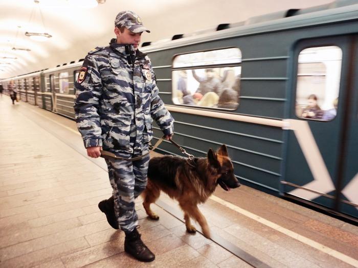 Служба на таможне, в полиции, в армии всегда связана с риском