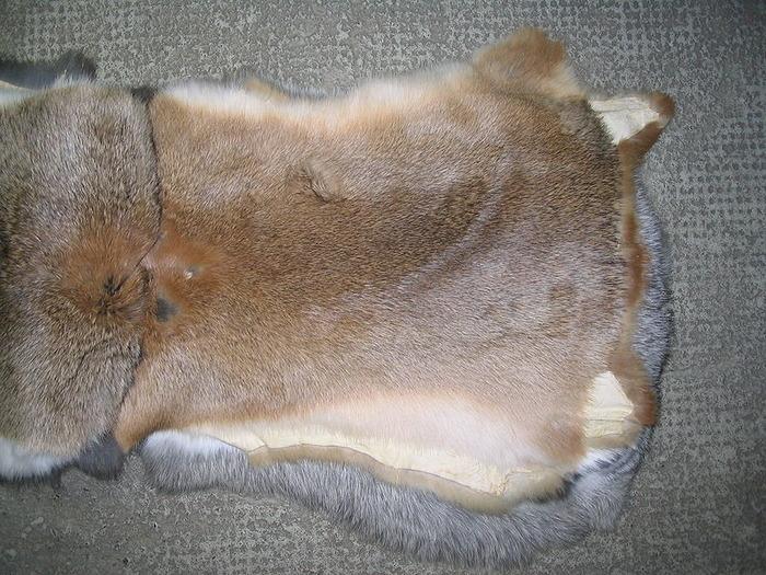 Немного увеличить рентабельность кролиководства можно, продавая шкурки животных
